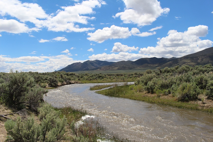 Reese River Valley, spring 2016. This is one of the areas that has been opened to oil and gas leasing and potentially fracking. Currently these public and private lands are used by ranchers, farmers, and outdoor recreation. Photo: Juan Chorro