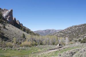Mt Hope backcountry